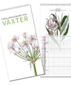 Växter - familjekalender från Gullers