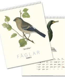Fåglar - väggkalender från Gullers